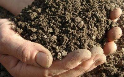 Aktualni javni razpisi za dodelitev sredstev za pomoč v kmetijstvu